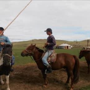 Mongols à Cheval